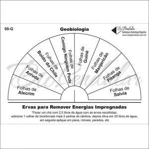 Geo - Ervas para Remover Energias impregnadas