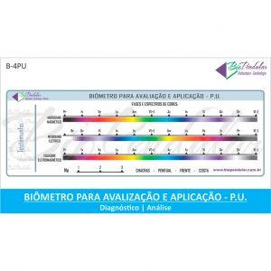 Biômetro para PU - Pêndulo Universal